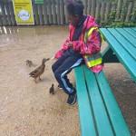 ducks E